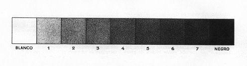 tono 5 en curiosidario