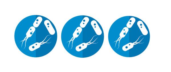 ingesta de probióticos