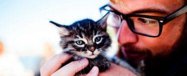 Productos y servicios cuidar a los animales